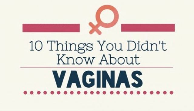 10 things you did not know about vaginas